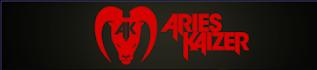 http://www.aries-kaizer.com/